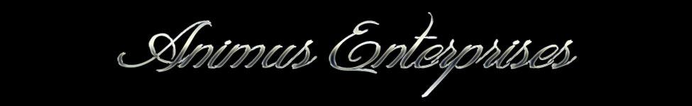 animus-enterprises-biglogo